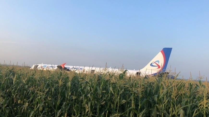 В Подмосковье совершил жесткую посадку пассажирский самолет