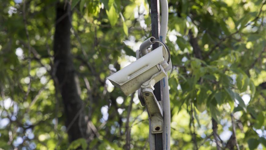 Все под контролем: на тюменских дорогах станет больше камер слежения