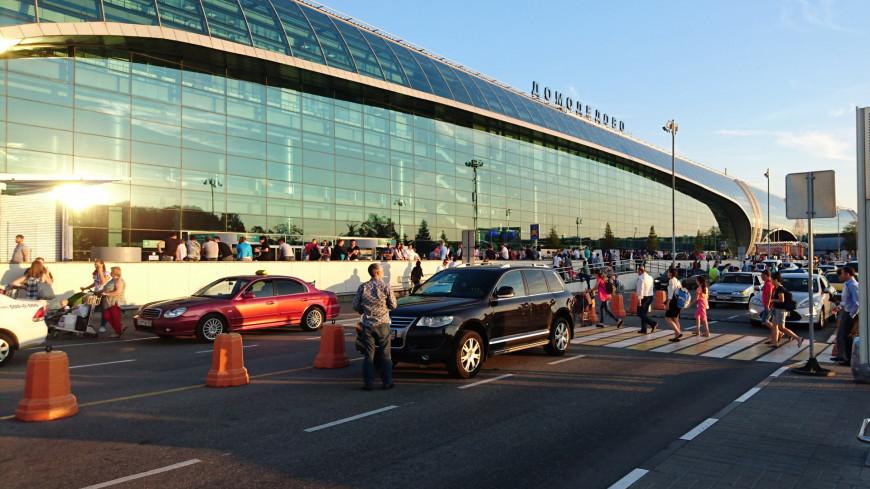 СМИ: Пассажирам аварийно севшего A321 предложили вылететь из Домодедова