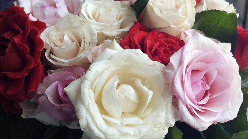"""Фото: Дарья Никишина, """"«Мир 24»"""":http://mir24.tv/, букет, цветы, розы"""