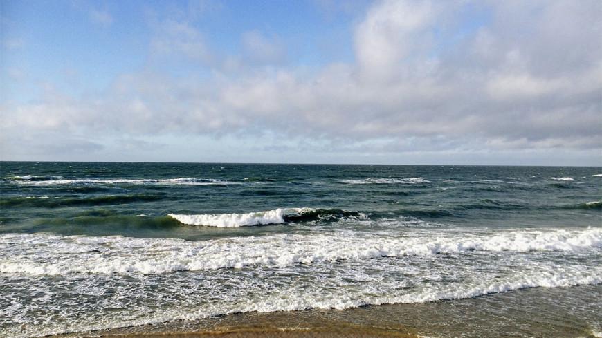 "Фото: Надежда Сережкина (МТРК «Мир») ""«Мир 24»"":http://mir24.tv/, море, калининград, балтийское море, побережье, куршская коса"