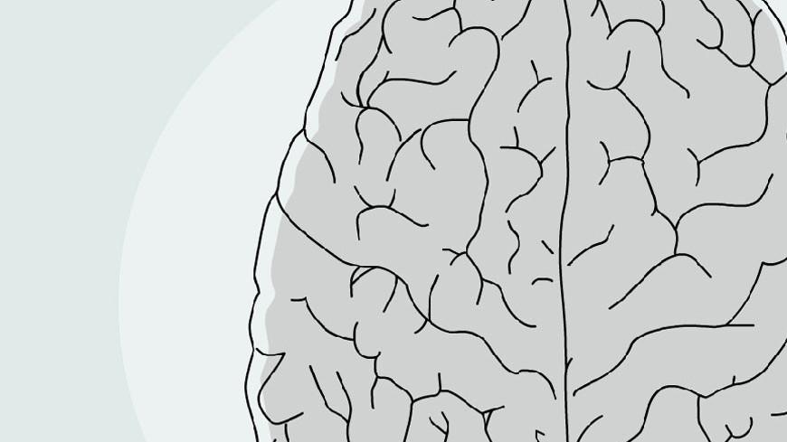 Найден способ предотвращения гибели мозга