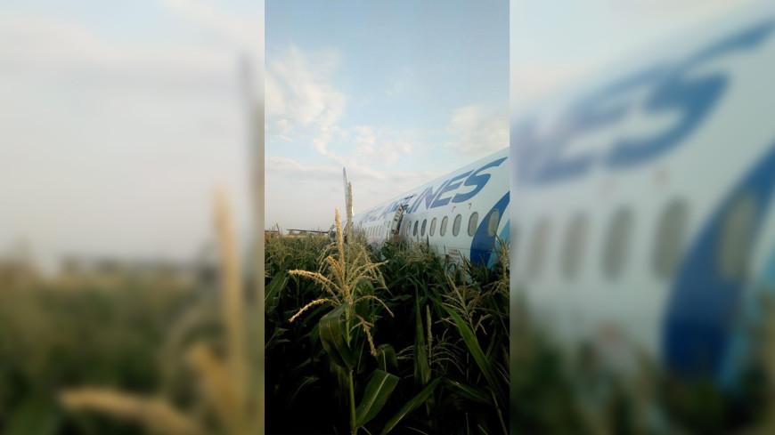 Пассажиры благодарят пилота севшего в Подмосковье самолета