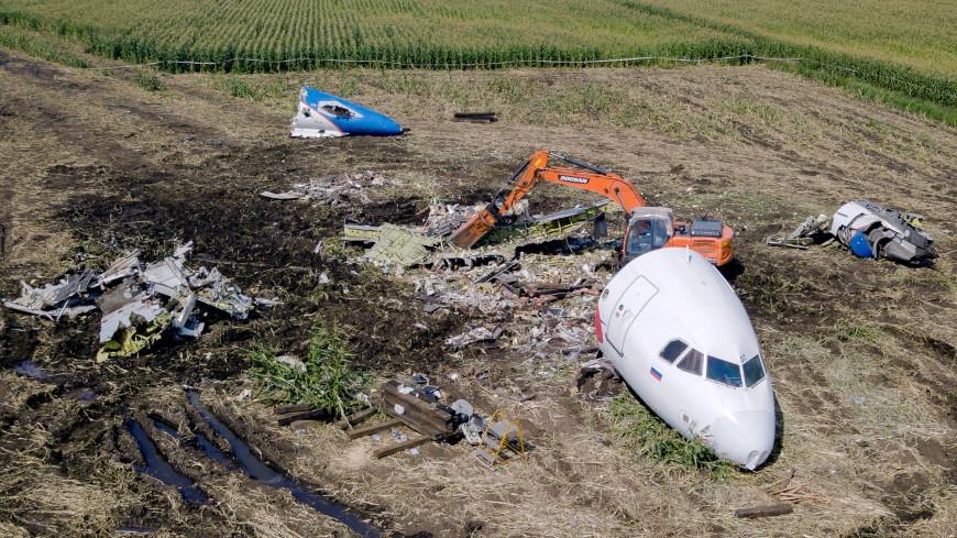Кабину и хвост самолета Airbus убрали с кукурузного поля в Подмосковье