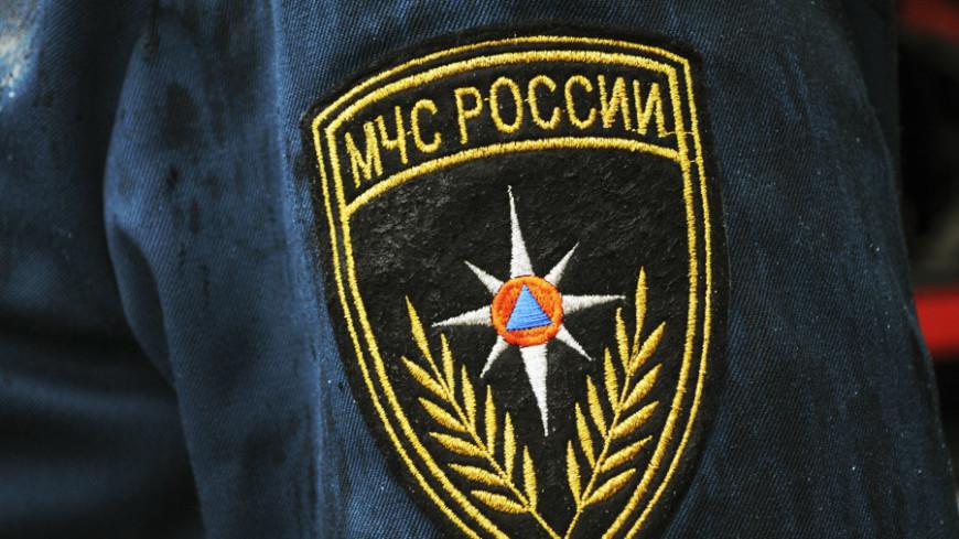 Сотни человек ищут пропавшую под Нижним Новгородом пятилетнюю девочку
