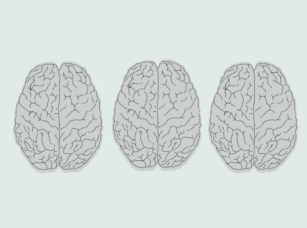 Жизнь в изоляции уменьшает головной мозг