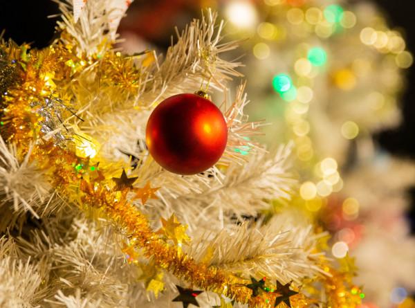 Новый год без пожара: МЧС дало советы, как украшать елку