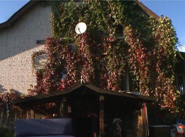 «Фазенда Лайф»: как превратить летнюю веранду в зимнюю резиденцию