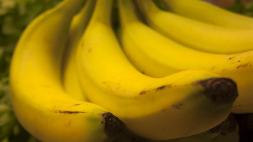 "© Фото: ""Елена Андреева, «Мир 24»"":http://mir24.tv/, бананы"