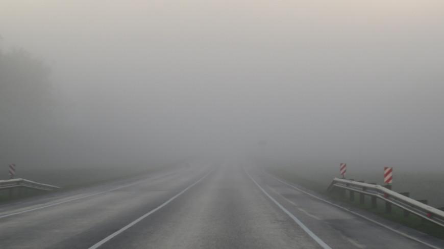 Московских автомобилистов призвали быть осторожнее из-за тумана
