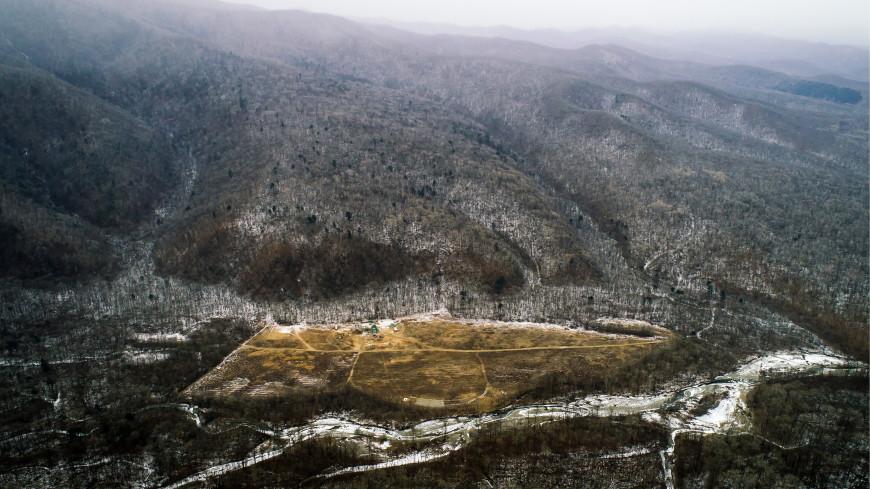 «Дальневосточный гектар» получили более 75 тысяч россиян