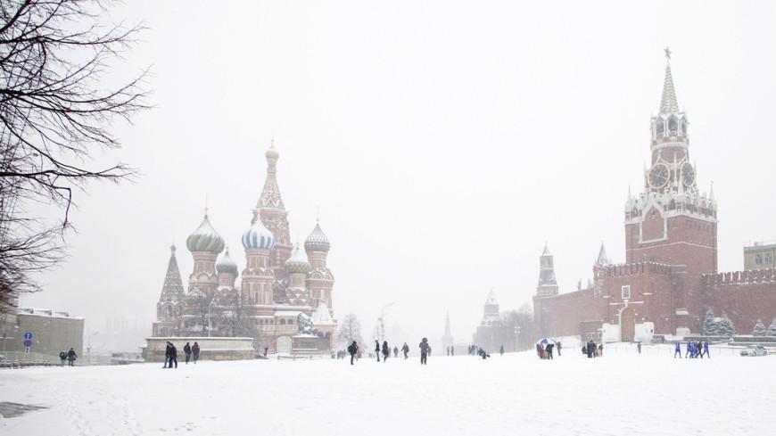 Снег, зима, метель, снег