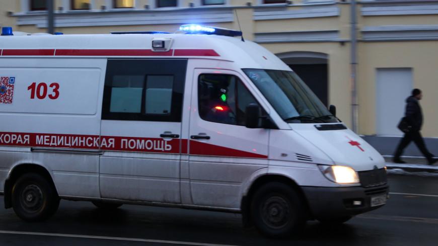 Канатоходец сорвался с высоты в тольяттинском шапито и упал вниз головой