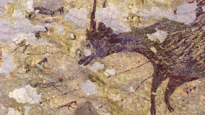 В Индонезии нашли древнейшие наскальные рисунки в истории человека