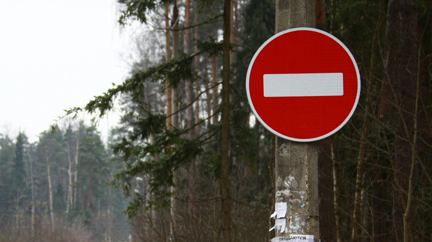 дорога, проезд, лес, снег, зима, дорожный знак, стоп, кирпич, проезда нет,