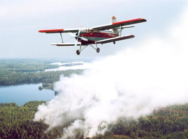 В Приморье потушили все лесные пожары