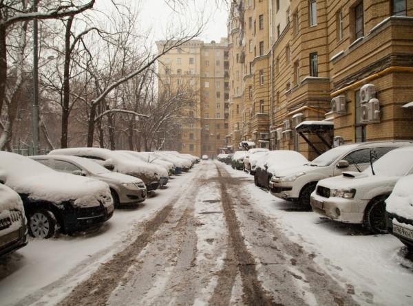 Упавшие из-за сильного ветра деревья в Москве повредили несколько авто