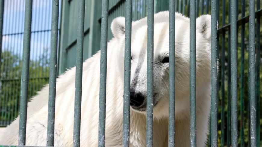 Зоопитомник - Московский зоопарк
