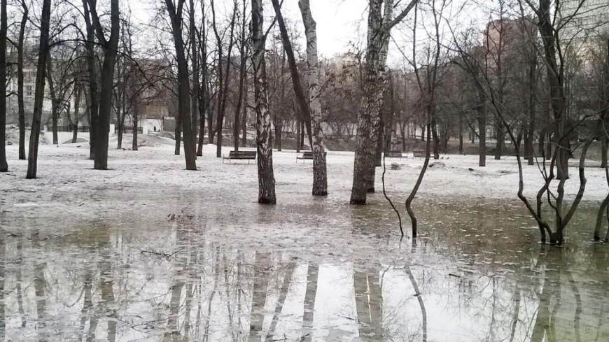 "Фото: Елена Карташова, ""«МИР 24»"":http://mir24.tv/, оттепель, лужи, зима"