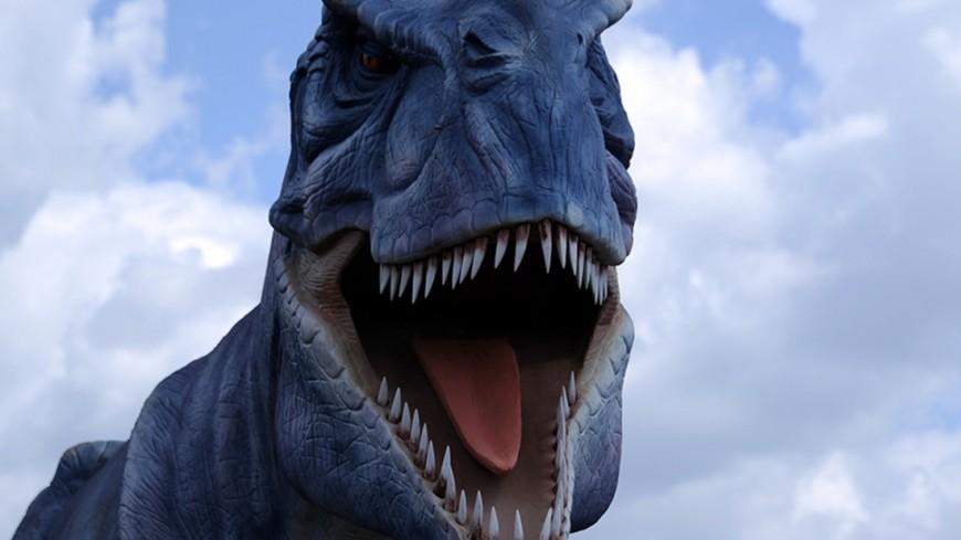 В Австралии нашли тропу динозавров