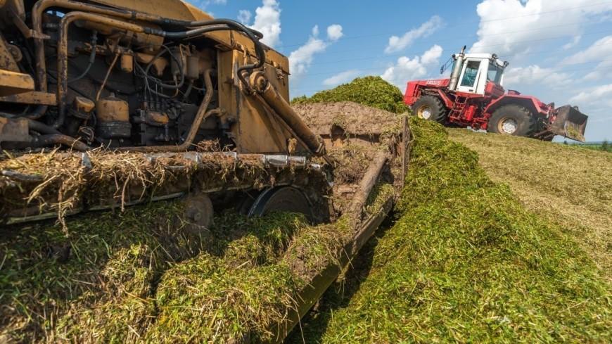 Власти Карелии в два раза увеличили поддержку сельского хозяйства