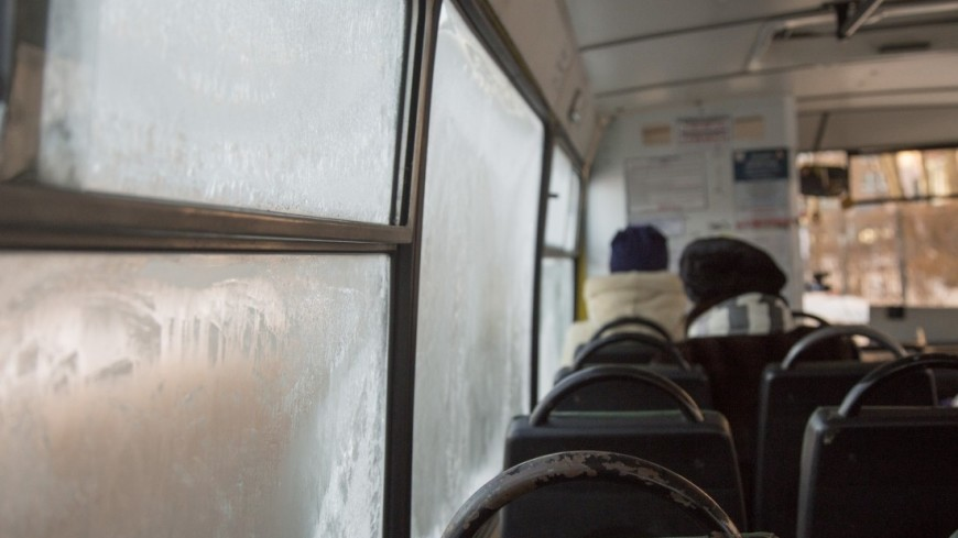 Пассажиры,автобус, троллейбус, пассажир, зима, мороз, окно,автобус, троллейбус, пассажир, зима, мороз, окно