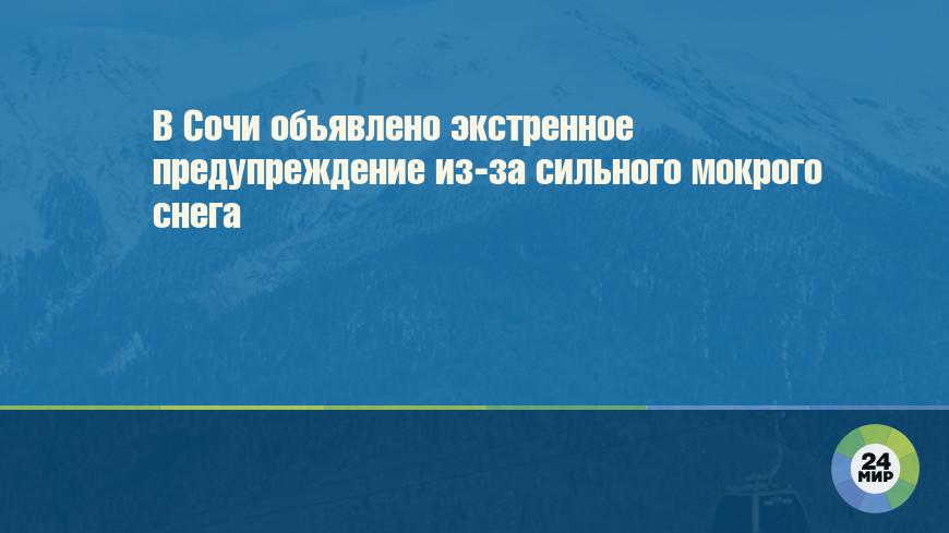 В Сочи объявлено экстренное предупреждение из-за сильного мокрого снега