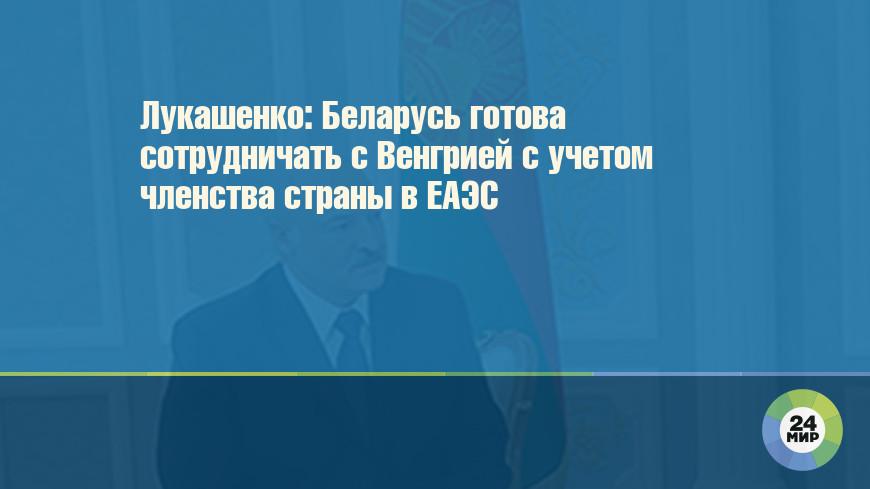 Лукашенко: Беларусь готова сотрудничать с Венгрией с учетом членства страны в ЕАЭС