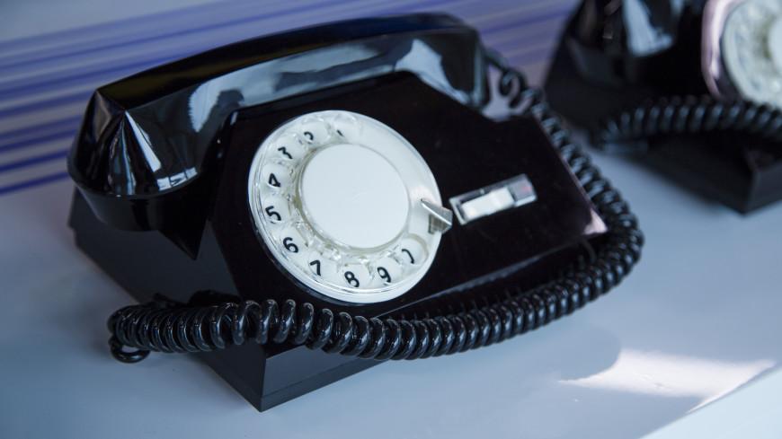 Мужчина обнаружил внутри телефона склад мертвых тараканов