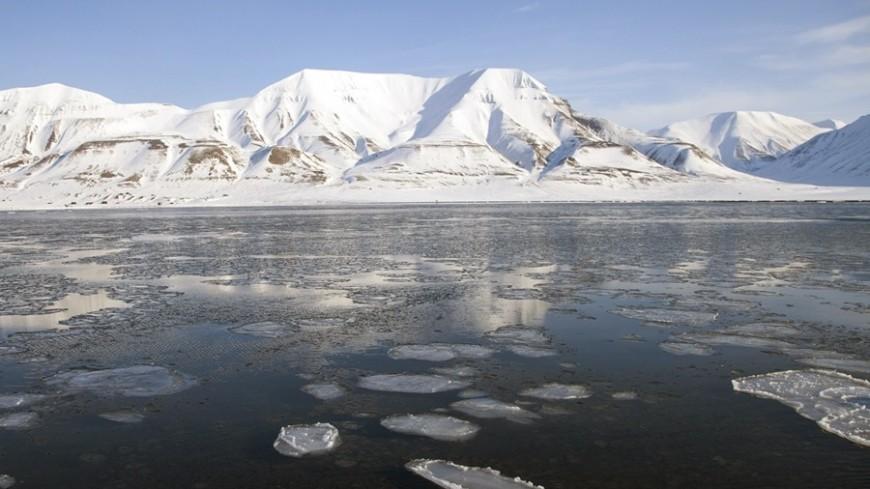 северный полюс, полярники