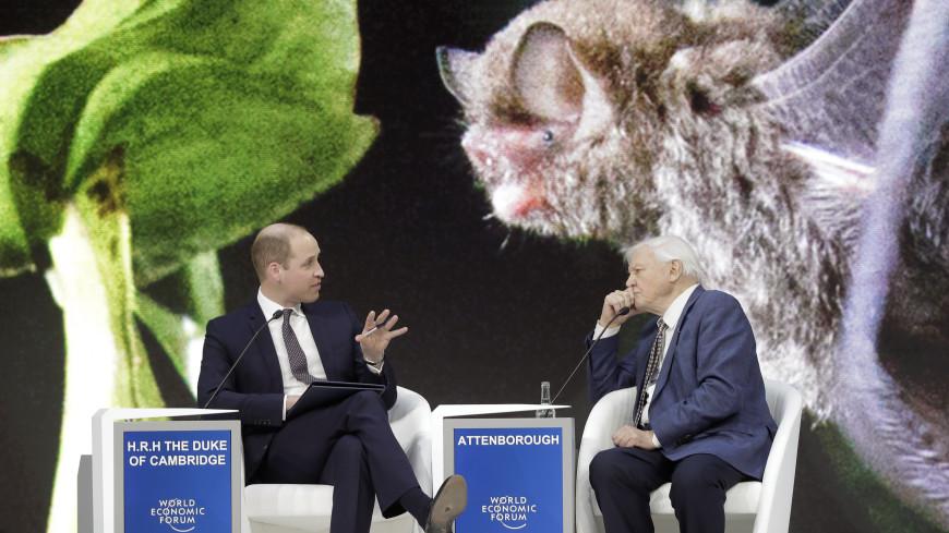 Конфуз: принц Уильям «сверкнул» рваным ботинком на форуме в Давосе
