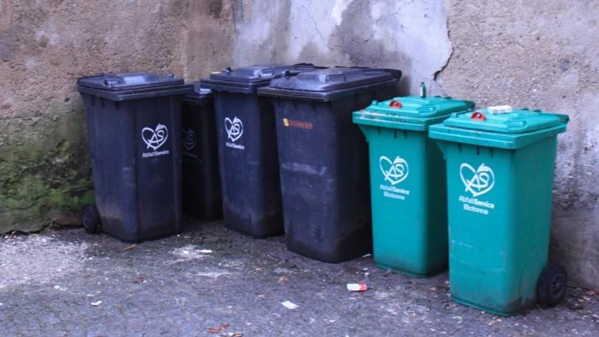 "Мусор, мусорка Фото: Чегляева Мария, ""МТРК «Мир»"":http://mirtv.ru/, мусорка, мусор"