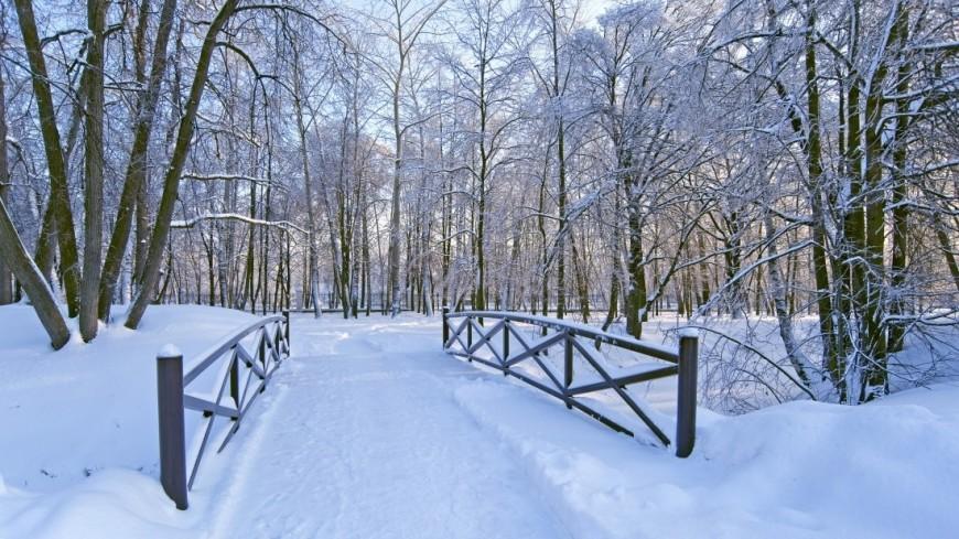 Зима (снег, сугроб, холод, мороз, парк, лес, мост, ограда)