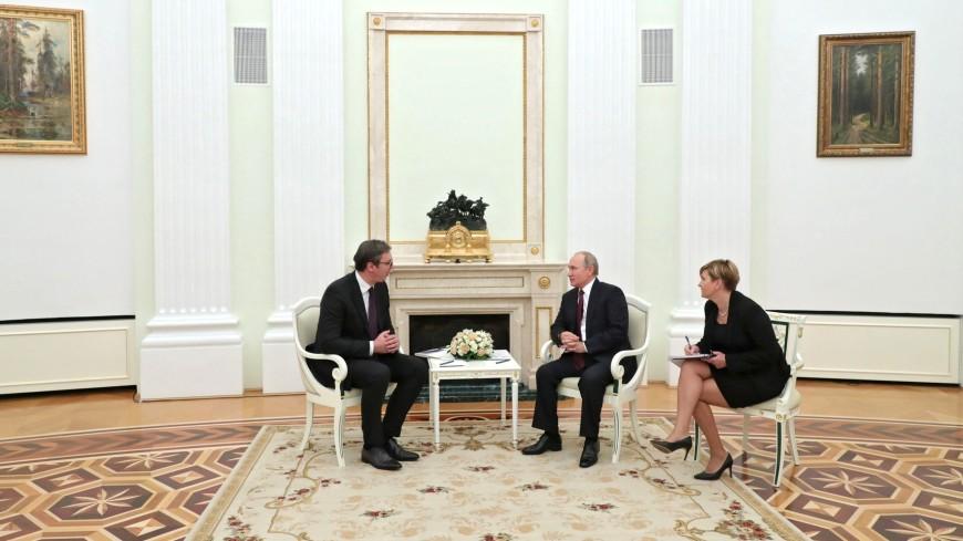 Вучич подарит Путину щенка югославской овчарки