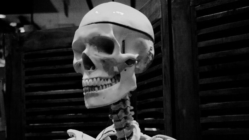 "Фото: Елена Андреева, ""«Мир24»"":http://mir24.tv/, скелет, череп"