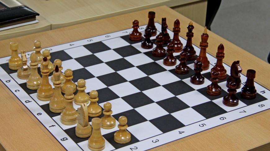 "Фото: Надежда Сережкина (МТРК «Мир») ""«Мир 24»"":http://mir24.tv/, шахматы, библиотека, книги"