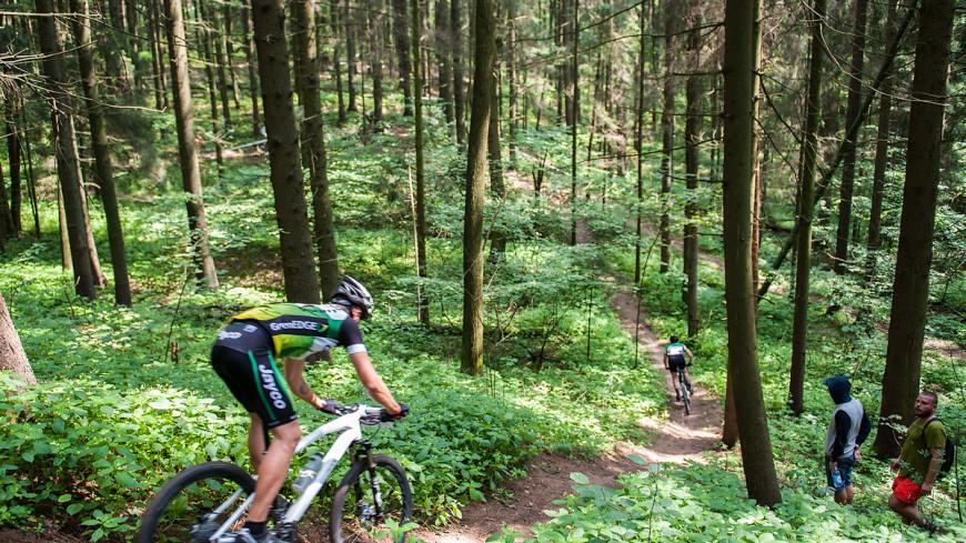 Недалеко от Минска прошла кросс-кантри-гонка 3-го этапа Кубка Беларуси по XCO – классическая гонка на горных велосипедах.,велогонка, велосипед, лес, парк, велосипедная прогулка, кросс-кантри, горный велосипед,велогонка, велосипед, лес, парк, велосипедная прогулка, кросс-кантри, горный велосипед