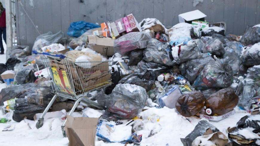 Новая Зеландия отказалась от одноразовых пластиковых пакетов