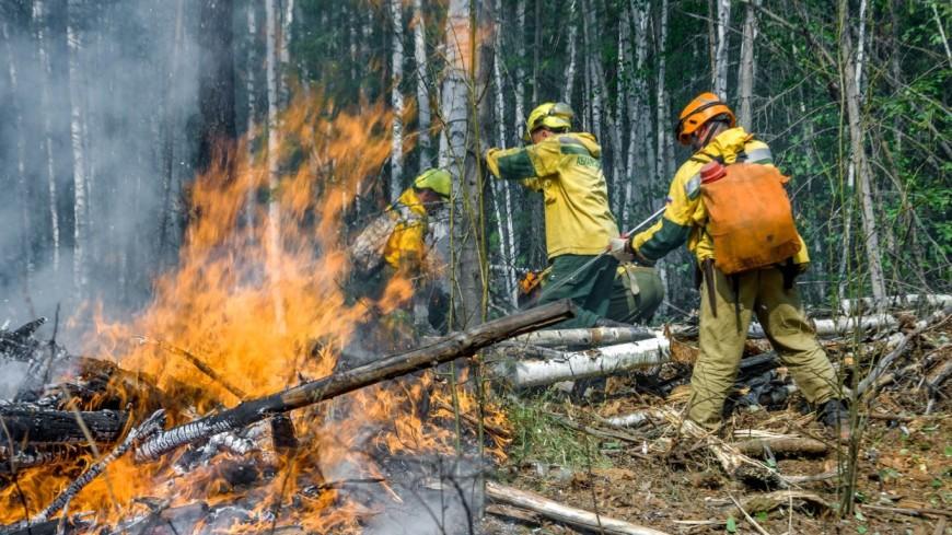 Сотрудники Авиалесохраны потушили за сутки 30 пожаров