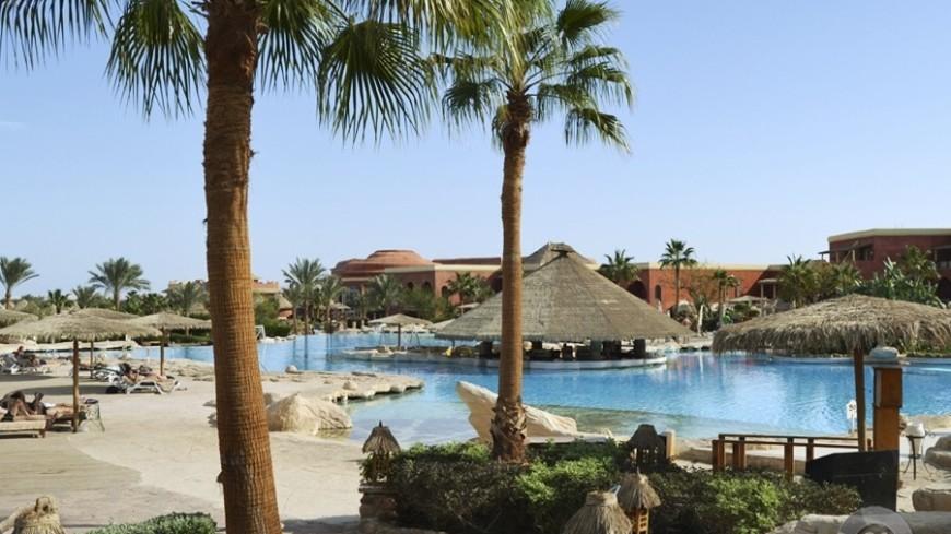 """Фото: Анжелика Сафронова, """"«Мир24»"""":http://mir24.tv/, египет, отпуск, отель, пальмы"""