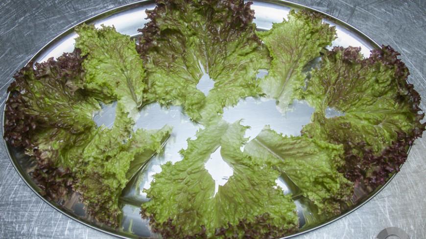 """""""Фото: МТРК «Мир»"""":http://mirtv.ru/, приготовление еды, салат, еда, готовка"""