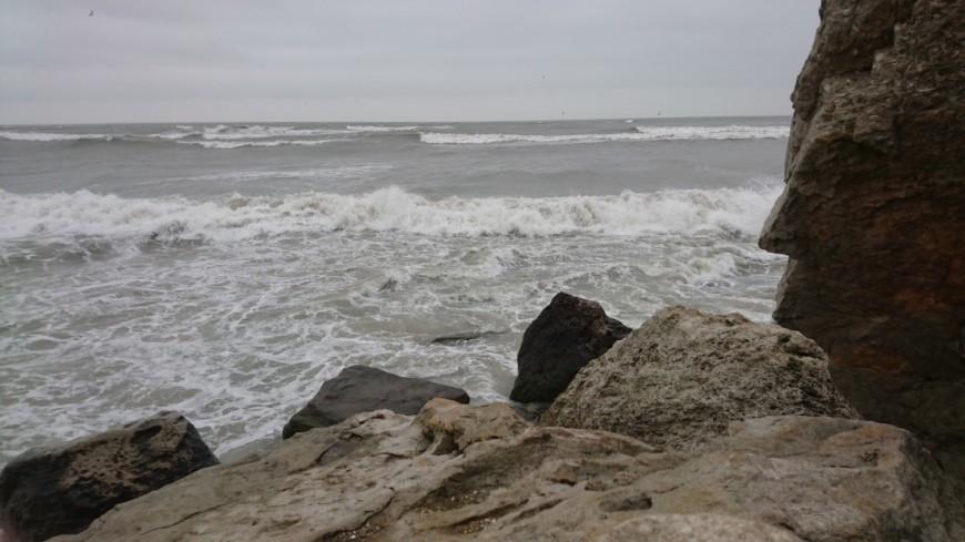 Скалы Мадейры покрыла «пластиковая ржавчина»