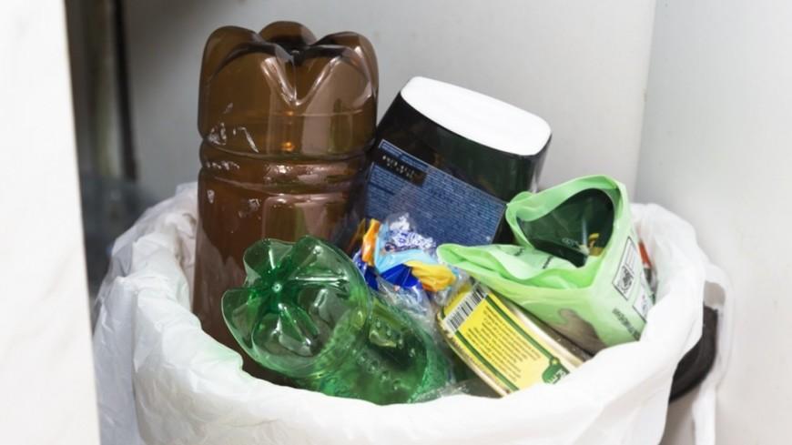 В Японии создадут «город без мусора»
