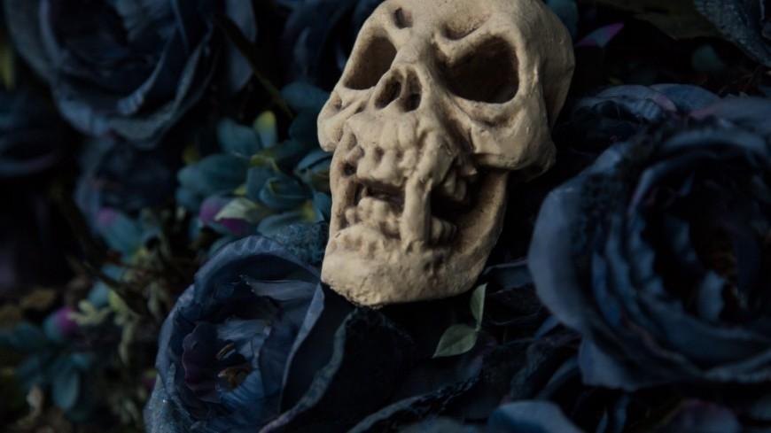 """Фото: Максим Кулачков, """"«Мир 24»"""":http://mir24.tv/, череп, смерть, готы"""