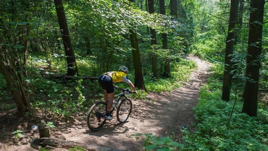 Спортдайджест: горный веломарафон и скачки на деревянных лошадках