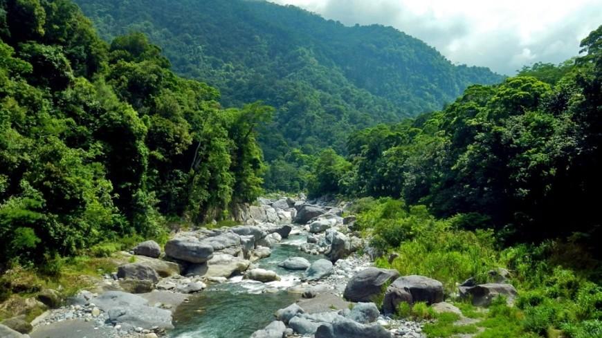 В лесах Гондураса нашли затерянный город с редчайшими животными