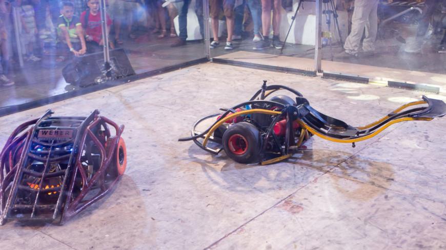 Итальянцы испытали робота-краба для сбора пластикового мусора