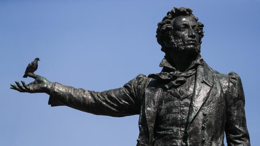 От Эфиопии до США: где можно встретить памятник Пушкину (ИНФОГРАФИКА)