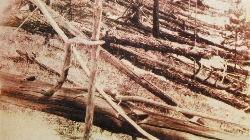 Стало известно количество жертв Тунгусского метеорита