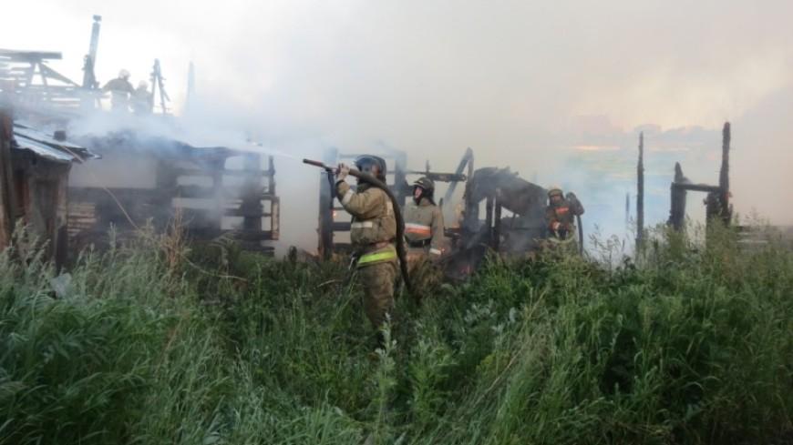 В Свердловской области собака во время пожара спасла многодетную семью
